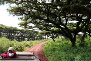 road to Ngorongoro