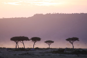 First light over the Mara conservancy