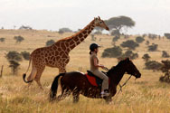 Horseriding Lewa Downs
