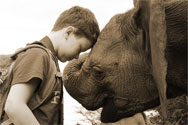 Boy at the Sheldrick Wildlife Trust